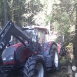Arne Martin kjører tømmeret ut av skogen og til saga